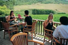 Dine at one of our fabulous wineries