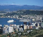 Wellington Harbour and Cruise Ship